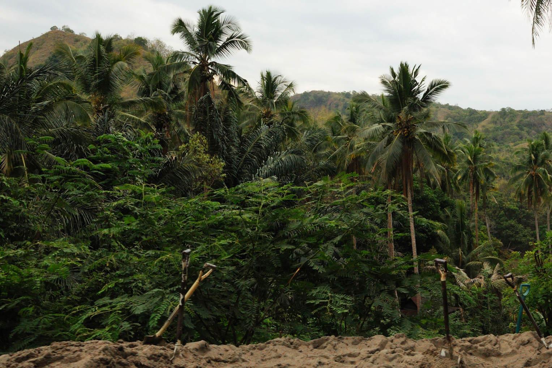 Tragedia na indonezyjskiej wyspie Jawa!