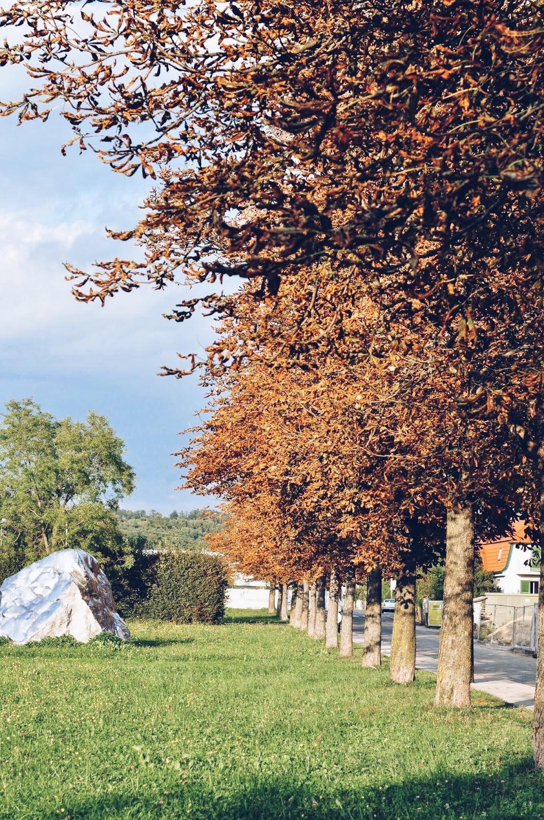 jesień w Graz, emigracja, thedailywonders