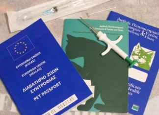 dokumenty potrzebne by sprowadzić kota z Grecji
