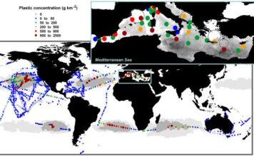 Plastik Plywajacy W Oceanie Mapa
